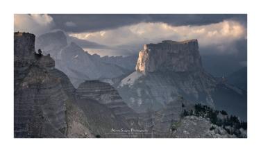 Vautour fauve en vol devant le Mont Aiguille